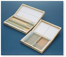 プレパラート標本箱(木製)